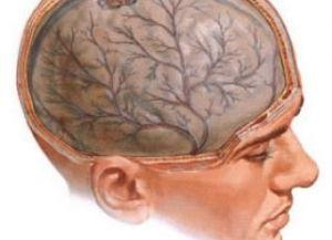 повреждение нервной системы
