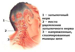 Почему болит ухо голова и шея