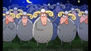 считать овец