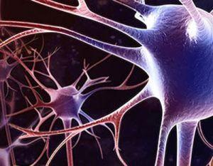 нарушения работы нейроново мозга