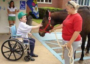 Ребенок и лошадь