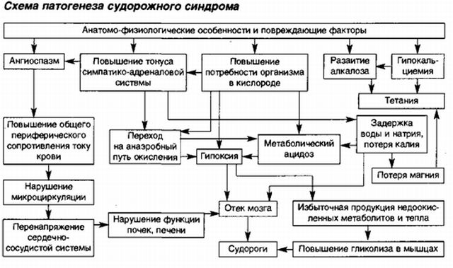 патогенез развития судорог