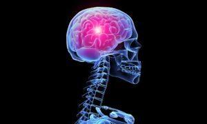 поражение мозга вирусом герпеса