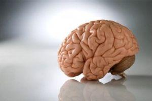 мозг и его аномалии