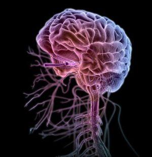 поражение мозга инфекцией
