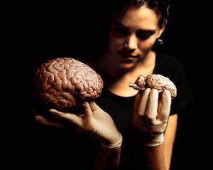 мозг в руках