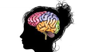 мозговая работа улучшилась