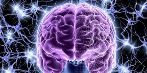 энцефалопатическая активность мозга