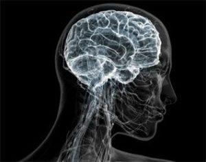 Атрофия сосудов мозга