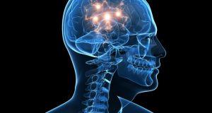 регенерация неврных клеток