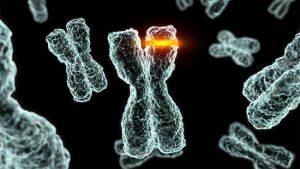 мутация генома