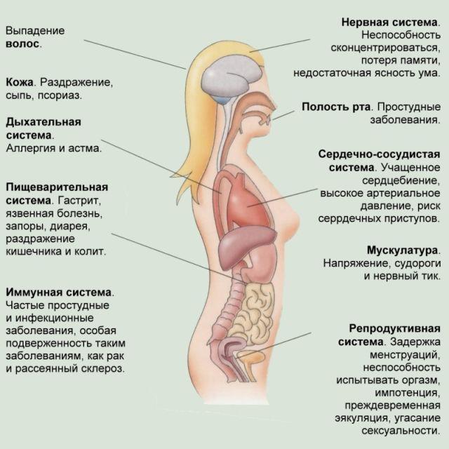 Как страдает организм
