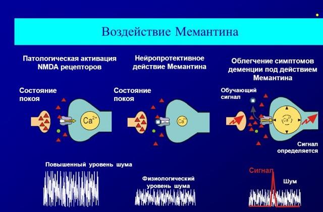 Воздействие мемантина