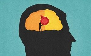 человек в мозгу
