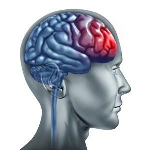 головной мозг поражение