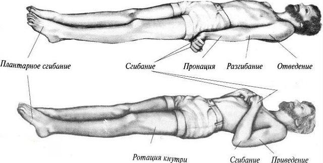 горметония