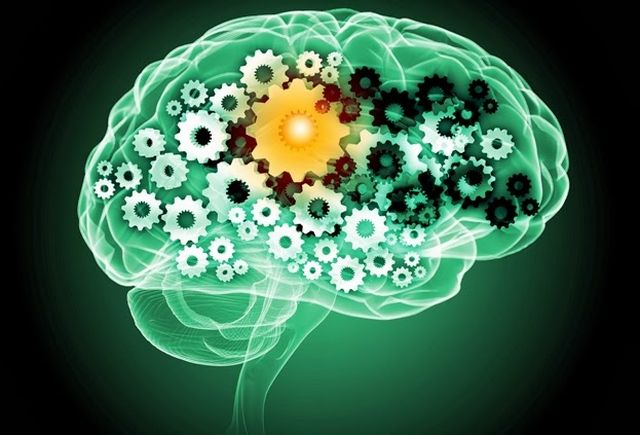 Шестерни головного мозга