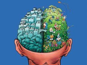 Мозговые структуры