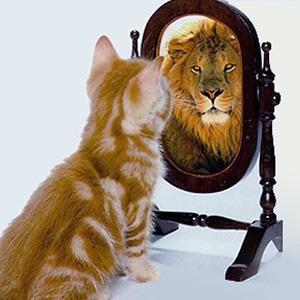 Кошка и лев