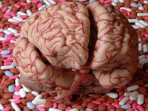 Мозг на столе
