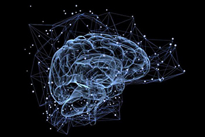 Черепно мозговые нервы