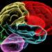Водопровод мозга