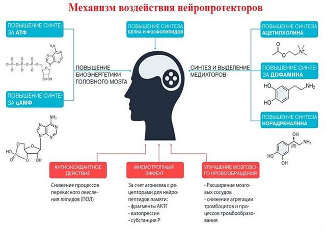 Воздействие препаратов