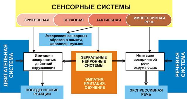 Принцип устройства анализаторов