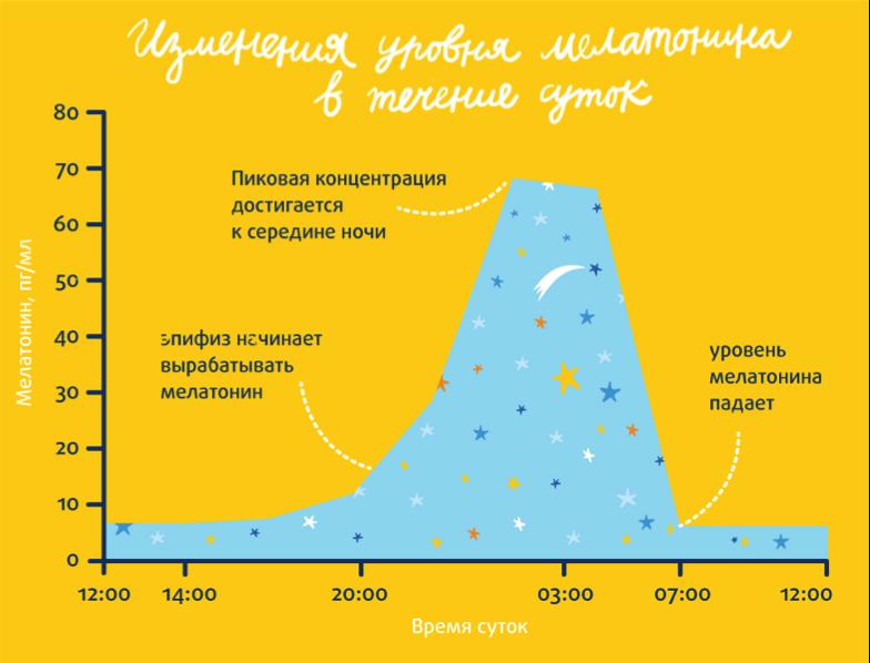 Сравнение мелатонин-содержащих препаратов Как лечить и вылечить